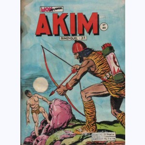 Akim : n° 483, Le labyrinthe secret