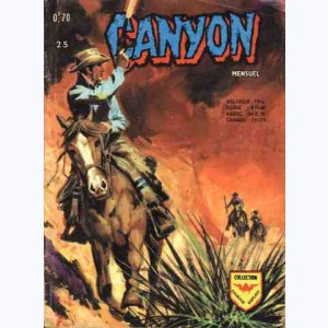 Canyon : n° 25, Le faux coupable