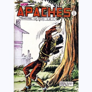 Apaches : n° 68, Billy BOY - Les assassins du canyon