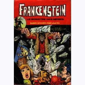 Frankenstein : n° 6, Le monstre des neiges