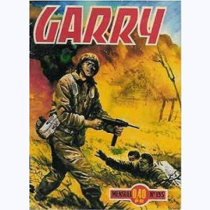 Garry : n° 195, Armada secrète