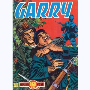 Garry : n° 256, Diversion