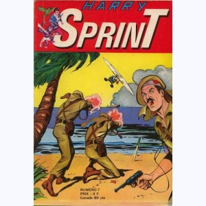 Harry Sprint : n° 7, Le galion fantôme