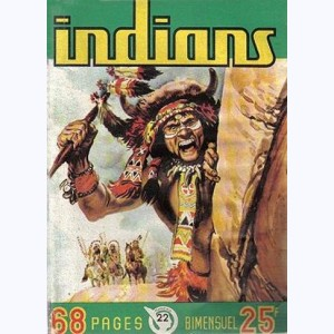 Indians : n° 22, Long Arc : Le voleur