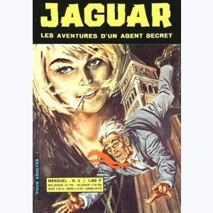 Jaguar : n° 3, Mission Venise