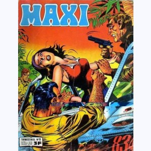 Maxi : n° 11, Jim HAWK : Une simple balafre