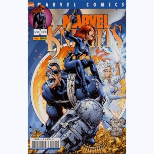 Marvel Knights : n° 20, Monde virtuel